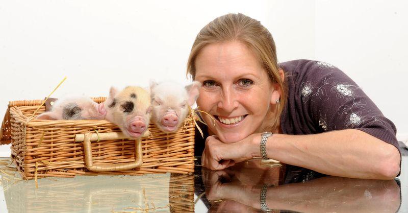 Jane Pig