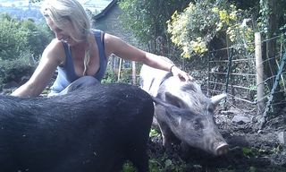 Me and pigs 5