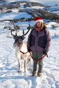 Sue and reindeer