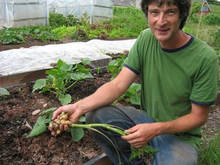Joe_and_Chervil_root